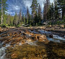 Utah Nature Photography - Provo River by Alan Mitchell
