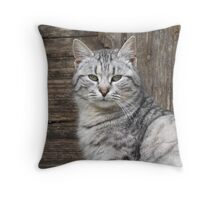 Tomcat Throw Pillow