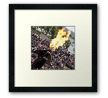 RES 2010 - 13 Framed Print