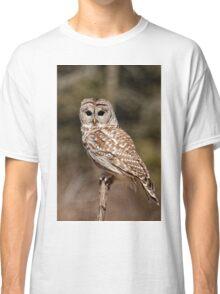 Barred Owl - Brighton, Ontario Classic T-Shirt