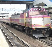 MBTA Commuter Lines/Freight Cars/Silver line bus/Amtrak Accelars by Eric Sanford