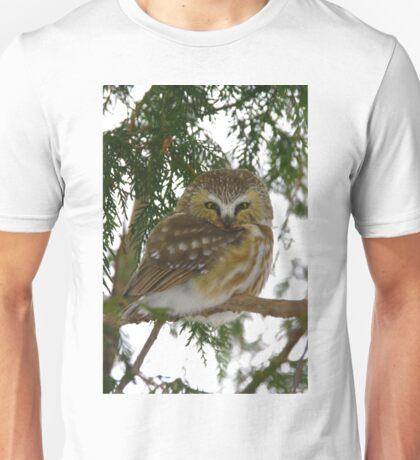 Northern Saw - Whet Owl - Ottawa, Ontario Unisex T-Shirt