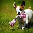 Roxanne, Happy With Her Favorite Toy by Peggy  Woods Ryan