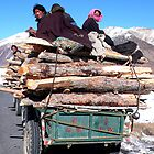 Tibetan buy wood from china by jihyelee