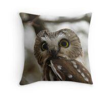 Northern Saw - Whet Owl - Amherst Island, Ontario Throw Pillow