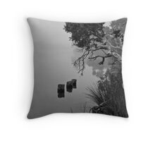 Mist on Hay River Throw Pillow