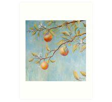 Orange Blossoms Art Print