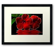 Magestic Red Framed Print