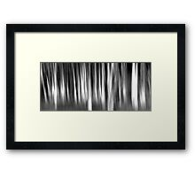 They come out at Night Framed Print