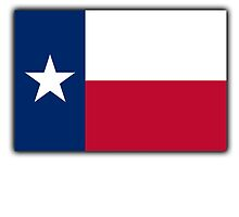 TEXAS, Lone Star, Texas Flag, Flag of the State of Texas, USA, America, American by TOM HILL - Designer