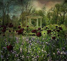 Gazebo - Bartlett Arboretum Belle Plaine, KS by aquarius84