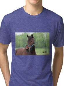 Pam - Nepean Equestrian Park Tri-blend T-Shirt