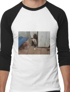 Ferret in autumn Men's Baseball ¾ T-Shirt