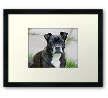 R.I.P. George Framed Print