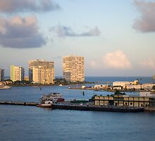 Fort Lauderdale Afternoon by robert cabrera