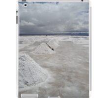 salt lake iPad Case/Skin