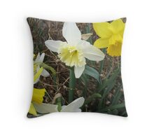 Debating Daffodils Throw Pillow