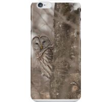 Shelter from the Snow iPhone Case/Skin