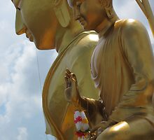 1000 steps to Buddha by Nupur Nag