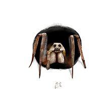 Wolf Spider by Arthropodart