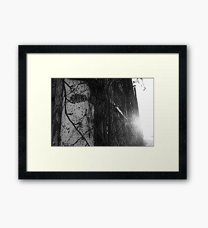 315 Framed Print
