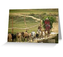 farming life in Nepal Greeting Card
