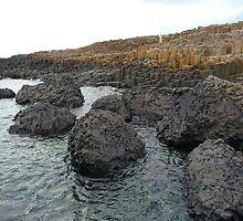 Giant's Causeway - Ireland by treeblack