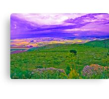 Between Sky and Earth Canvas Print