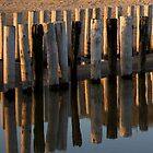 Reflections by Els Steutel