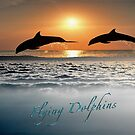 Flying Dolphins  by LGLProduction