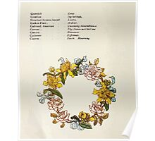 Language of Flowers Kate Greenaway 1884 0018 Descriptions of Specific Flower Significations Poster