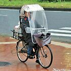 Rain Bicycle by phil decocco