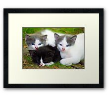 My Sisters Watch Over Me Framed Print