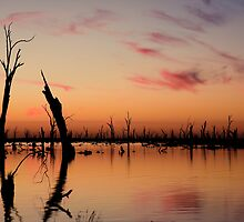 Lake Mulwala - Yarrawonga, Victoria by eighty4