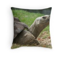 Tortoise time Throw Pillow