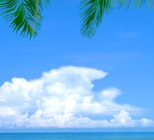 Beach And Palm Trees Sticker