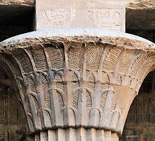 papyrus column by rhallam