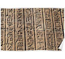 Columns of hieroglyphs Poster