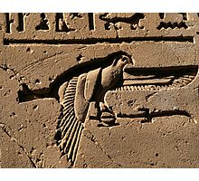 Bird hieroglyph 2 Photographic Print