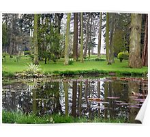 Woodland Park Reflections Poster