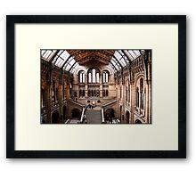 The Main Hall Framed Print