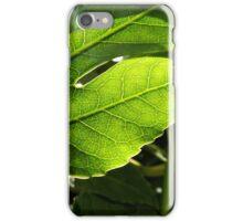 Day 181 iPhone Case/Skin