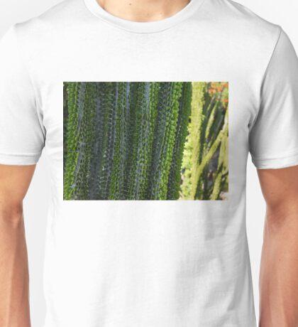 Strange Plantlife - Cactus Garden Barcelona Unisex T-Shirt
