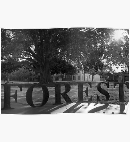 The Forest of Dreams Poster