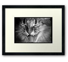 Kali Growling Framed Print