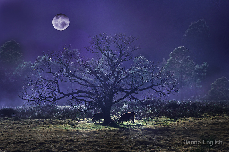 Midnight Feast by Dianne English