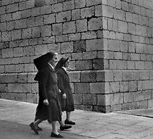Passing Nuns by Tom Palmer