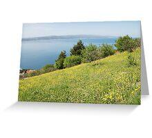 Brela flower meadow, Croatia Greeting Card