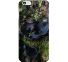 Ascomycetes (Cup and Flask Fungi)  iPhone Case/Skin