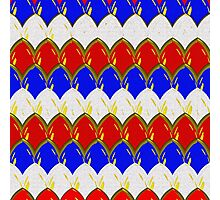 Red White & Blue with Gold Scales Photographic Print
